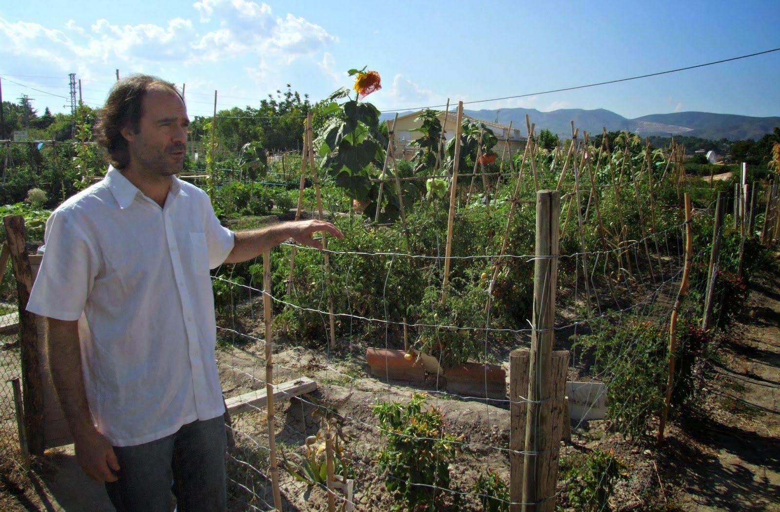 DIARIO DIGITAL D'ONTINYENT: El Regidor de Sostenibilitat anima a participar en...