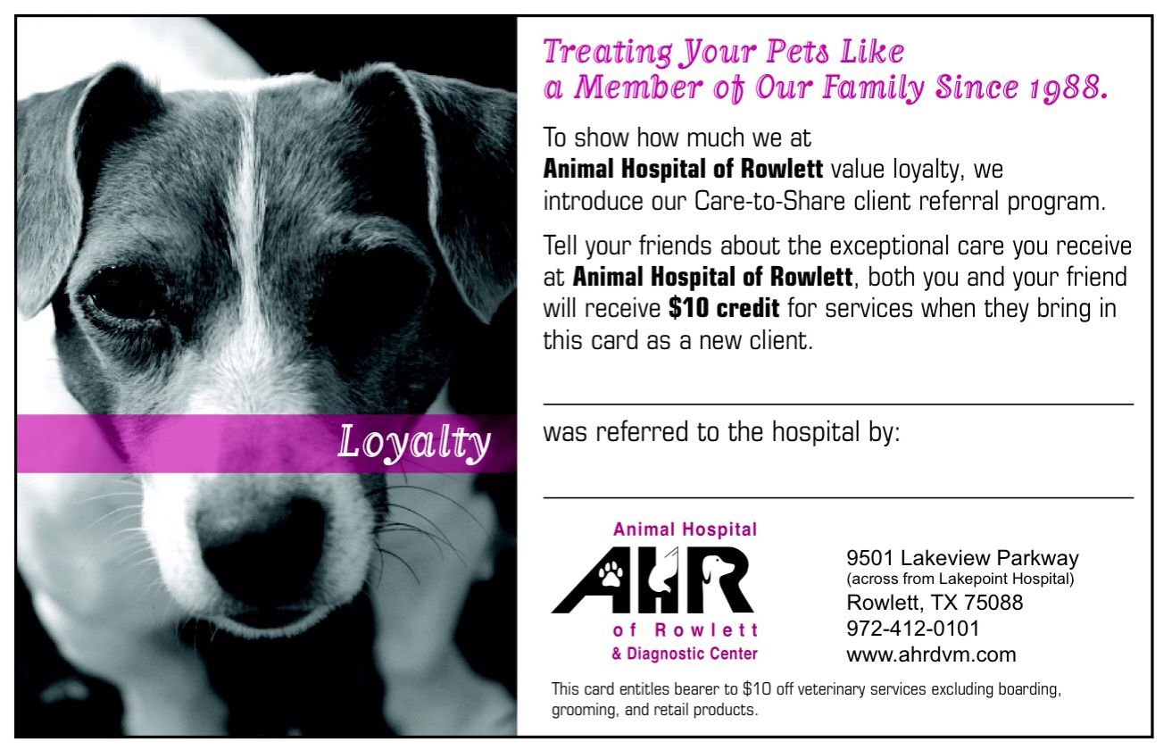 Clinic Special Ahrdvm Animal Hospital Your Pet Rowlett