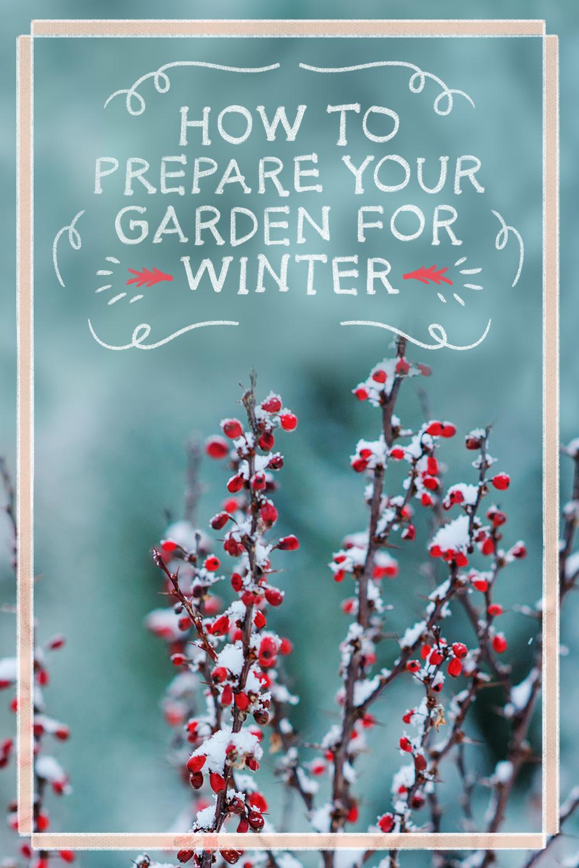 preparing garden for winter gardens