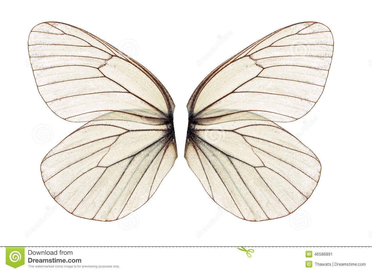 2 Transparent Png Beautiful Child Fairytale Butterfly Fairy White Sparkle Wings Photo Overlay Prop For Photographers Instant Download Photo Overlays Overlays Transparent Overlays Picsart