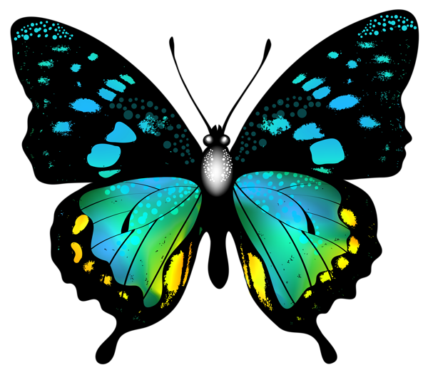 Blue Colorful Butterfly PNG Clip Art Image | Graphics ...