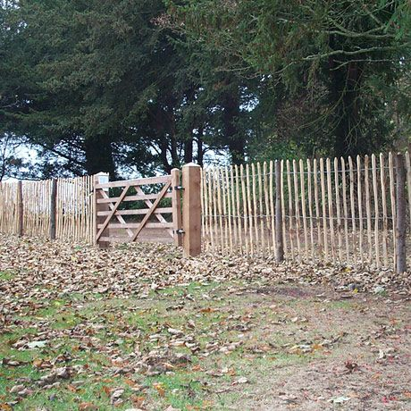 Easy Cheap Fencing To Keep The Rabbits Out Your Flowers Chestnut
