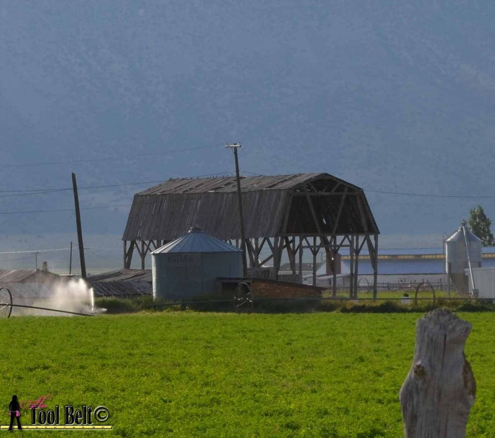 A few years ago, it was time for this old and unstable hay barn to go.  Luckily…