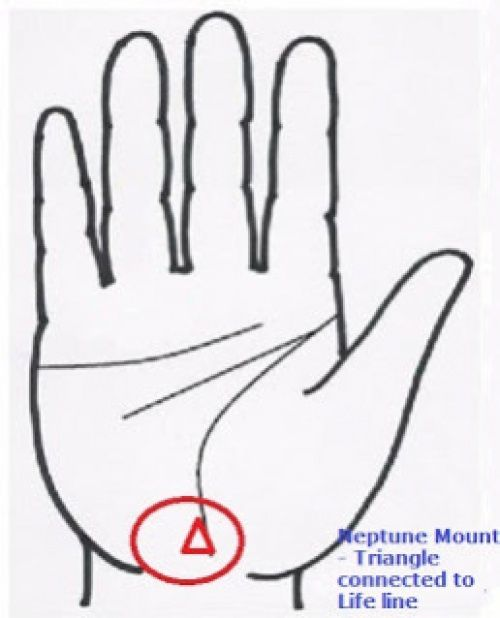 Check Lines On Your Palm And See What Neptune Mount Tells About Your Health Neptune Is The Ninth Planet On Palm Reading Palmistry Palmistry Reading