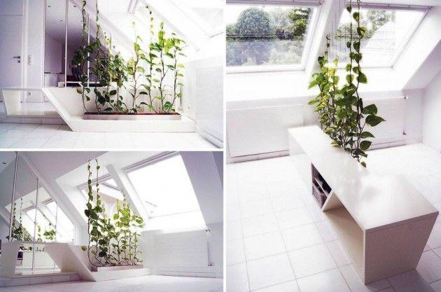 d8f00852526af0d0c3d24075e5285aba - Room Partition For Rent In Discovery Gardens