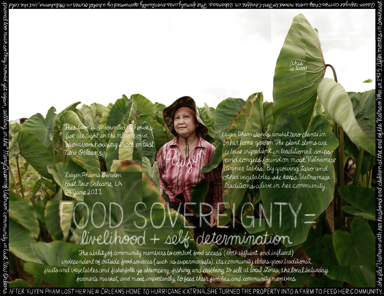 the lexicon of food sovereignty