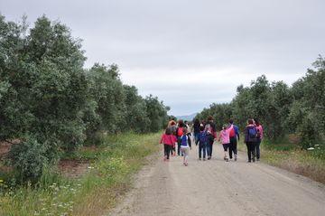 Entre Viñedos y Olivares - IV Primavera Enogastronómica 2016 - Ruta del Vino Ribera del Guadiana - Caminando entre Olivares en Palacio Quemado