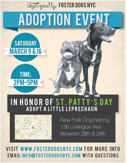 Adoption Event Poster Event Poster Poster Design Graphic Design Inspiration