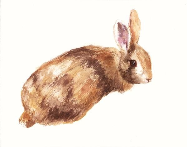 For a bunny themed nursery my little coffee and cream print would make a lovely playtime fried.