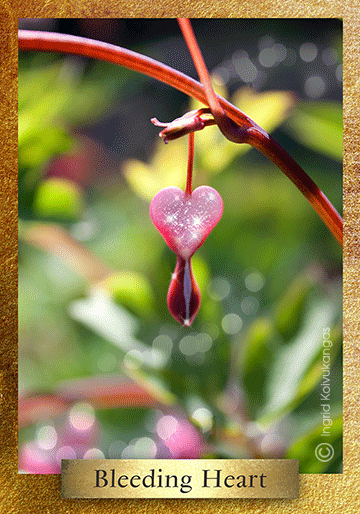 Tales of lost love and the Bleeding Heart are found in