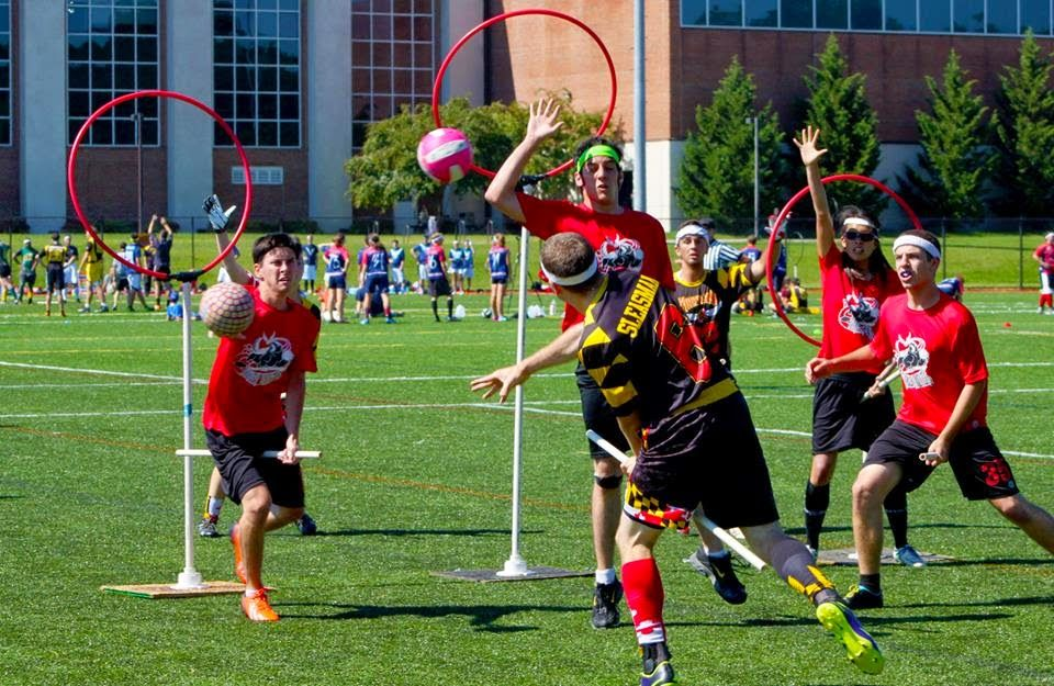 Pin On Quidditch O