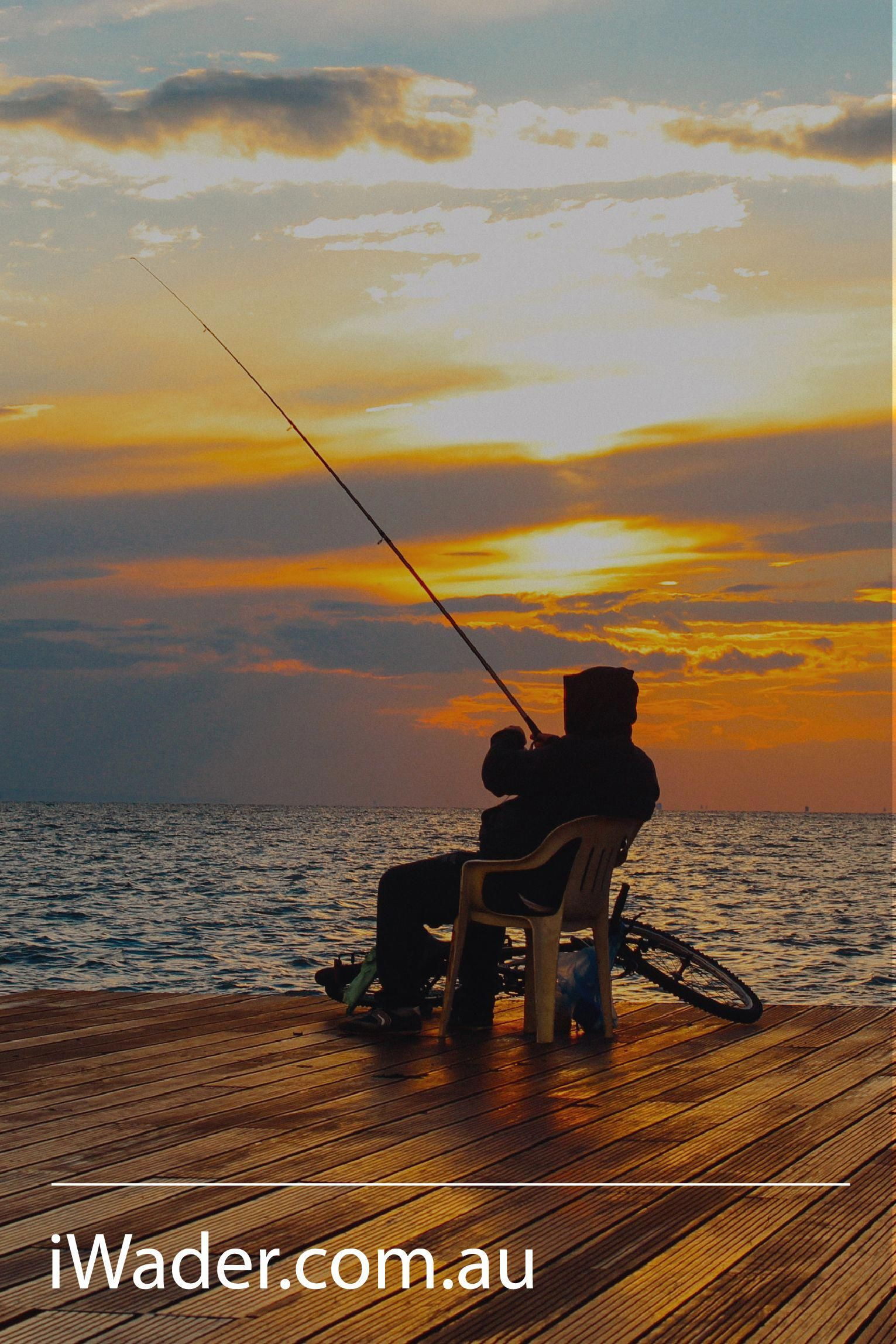 How To Fish Off A Pier The Best Pier Fishing Tips And Rigs To Land More Pier Fishing Fishing Tips Inshore Fishing