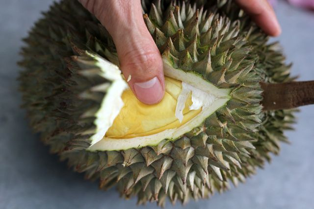 The Ultimate Bangkok Durian Guide: What You Need To Know About the Stinky Fruit