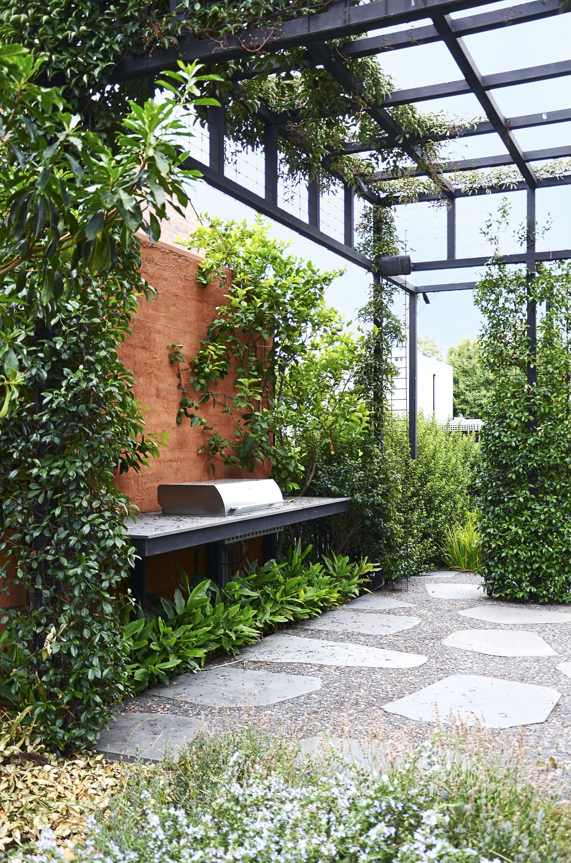 Jasmine Terrace: Gallery – Rambling Inner-City Garden