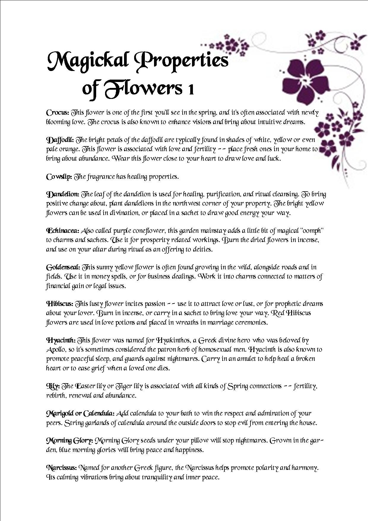 Magical Properties of Flowers 1 | Witchy things | Green witchcraft
