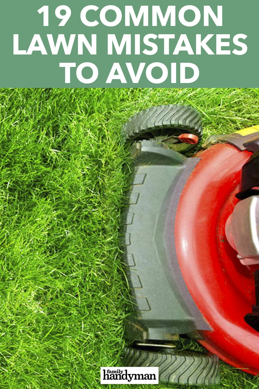 The 20 Ways You Re Doing The Wrong Thing For Your Lawn Lawn Care