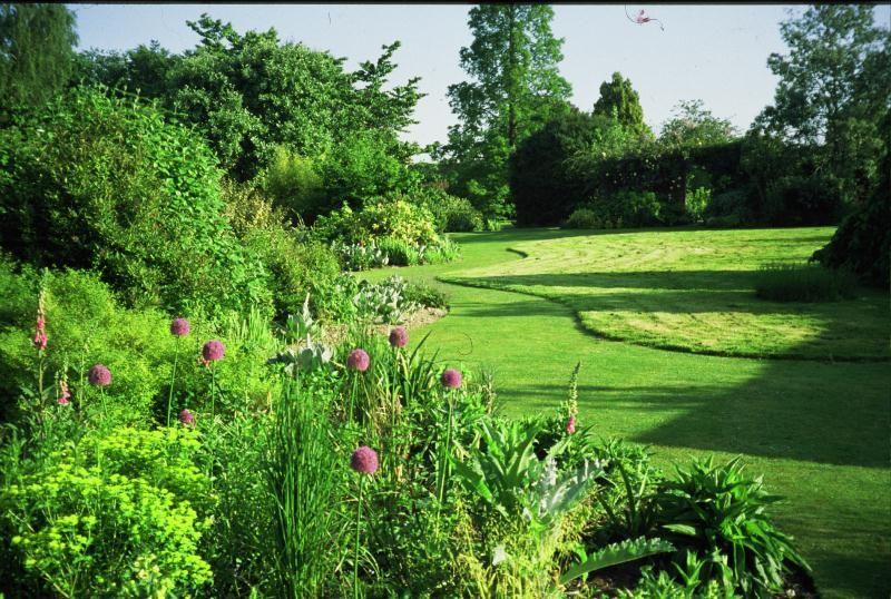 john brookes denmans garden buscar con google