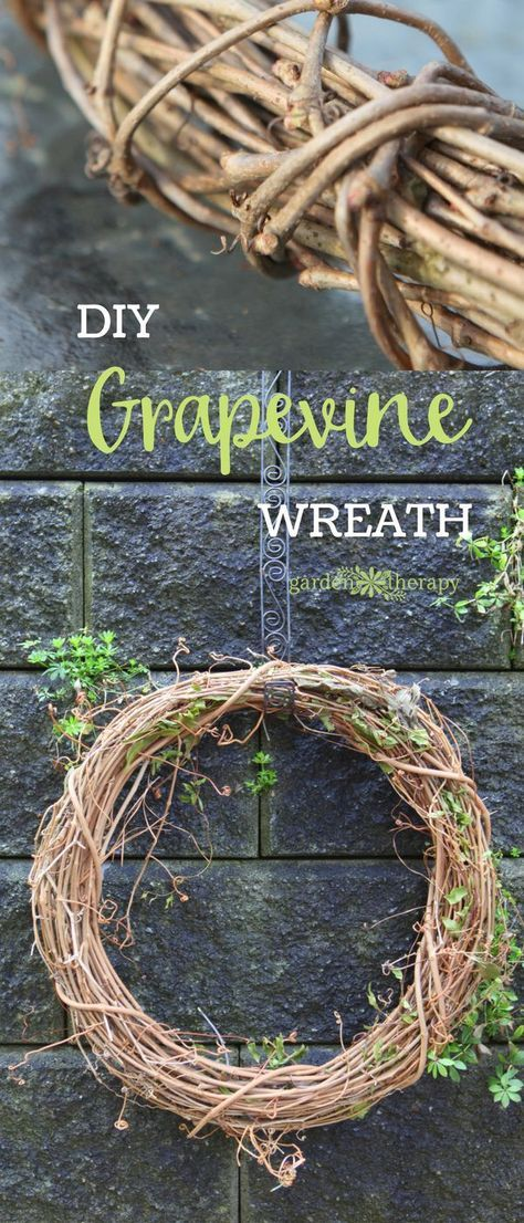 Photo of How to Make a Grapevine Wreath