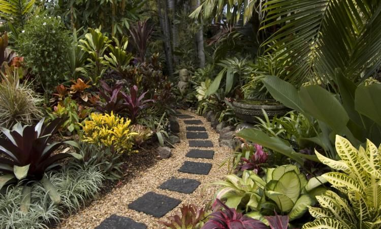 Tropical Landscaping Small Tropical Gardens Tropical Garden Design Tropical Landscaping