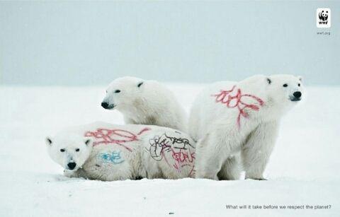 동물에게 그래피티를 합성한사진. 힙합3형제. 스웨ㅔㅔㅔㅔㅔㄱ