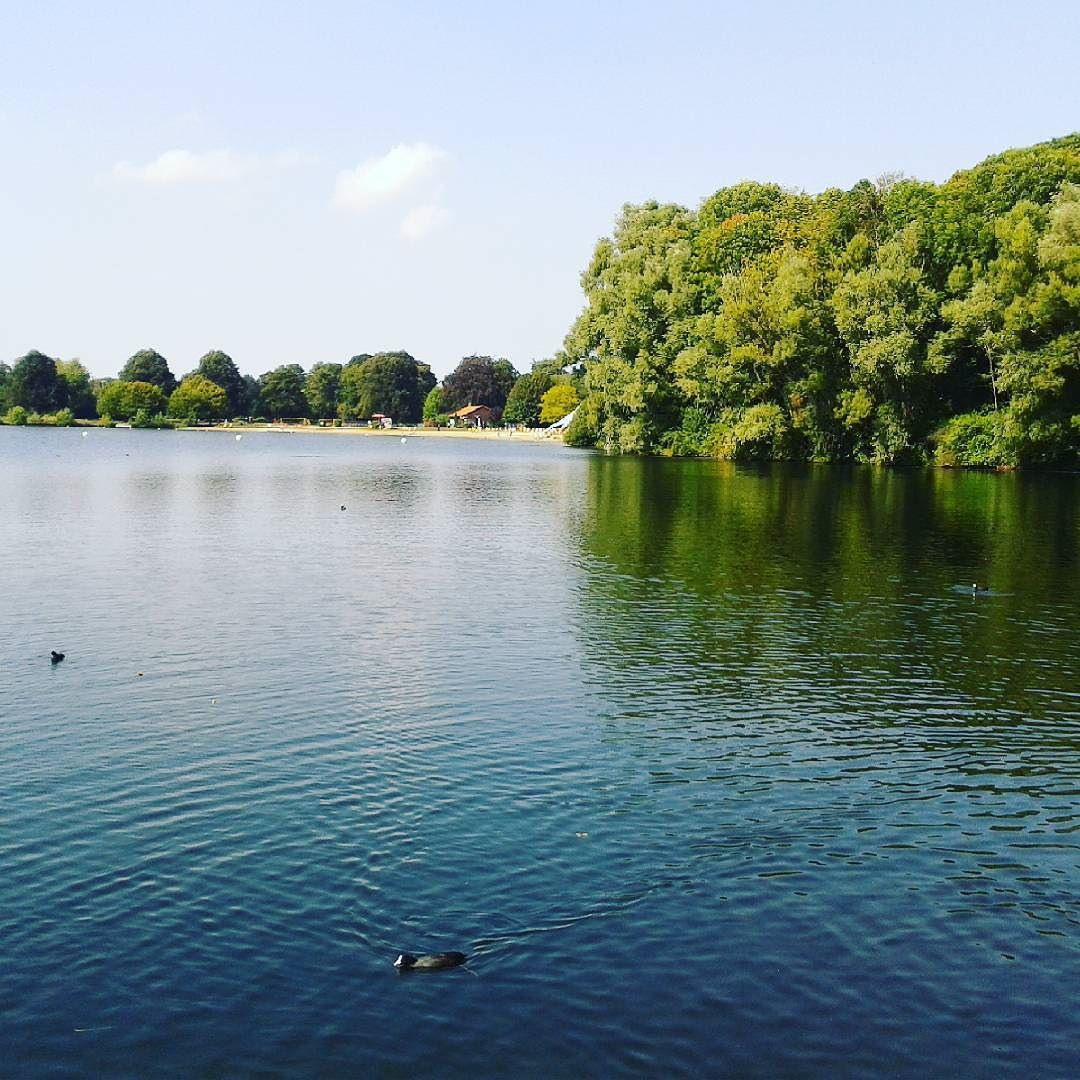 30º Celcius and the swiming area of Hildesheim\'s Hohnsensee is ...