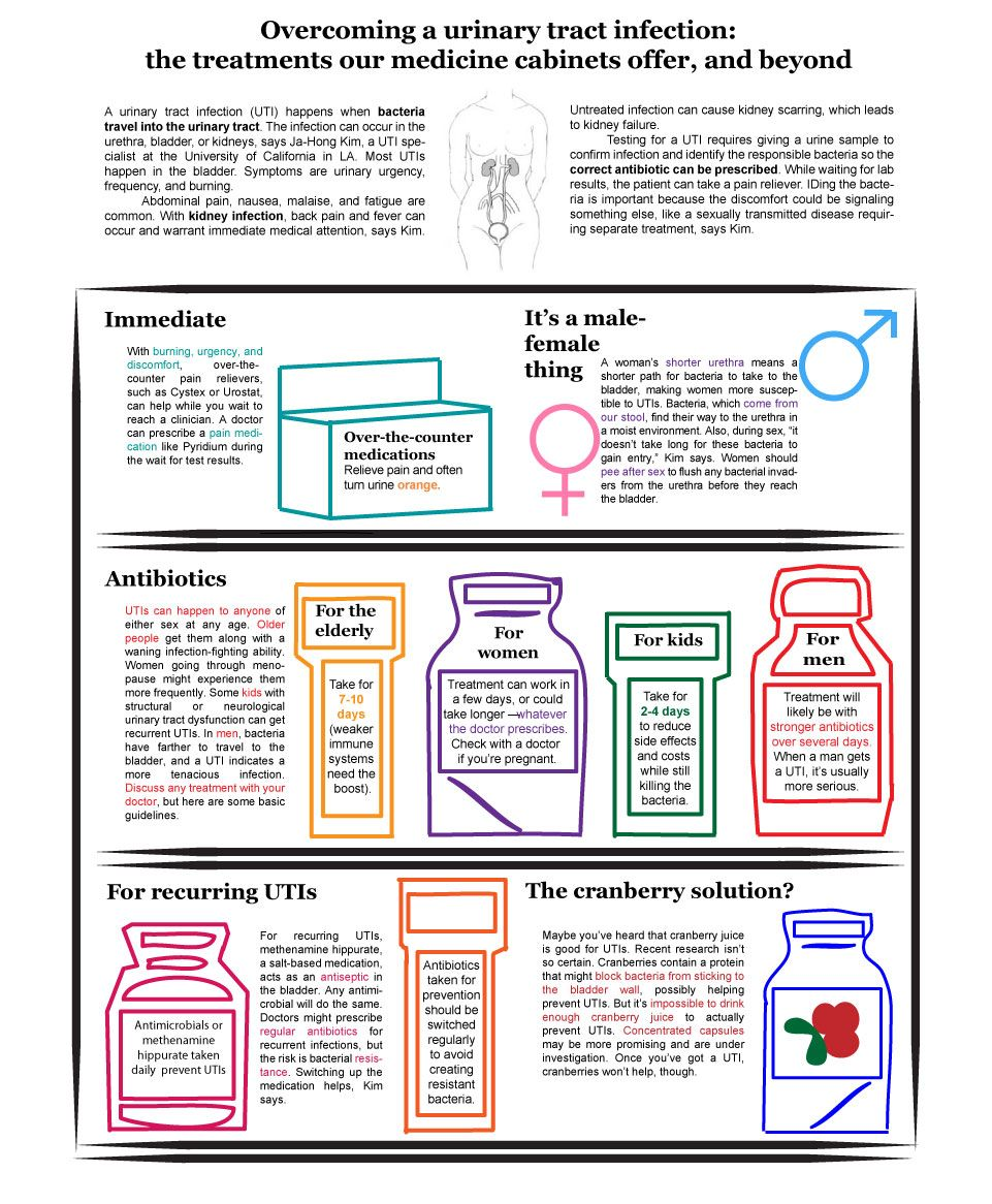 Infographic Urinary Tract Infection Urinary Tract Infection