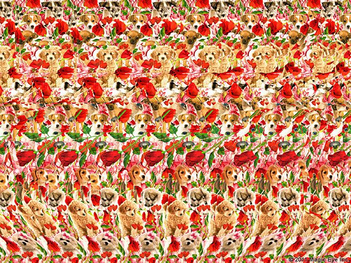 Can You See The Magic Hidden Message If You Click On The Image Of Flowers And Enlarge It Then Look Closely A Eye Illusions Magic Eyes Magic Eye Pictures