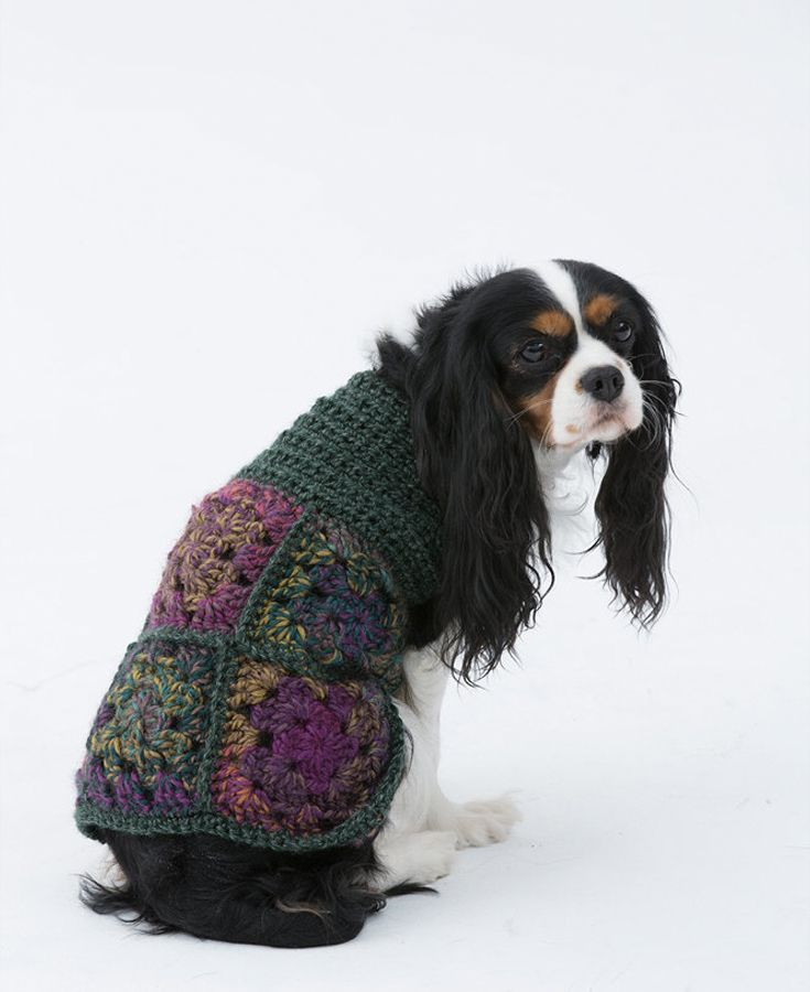 Romantic Crochet Dog Sweater Free Pattern Available At