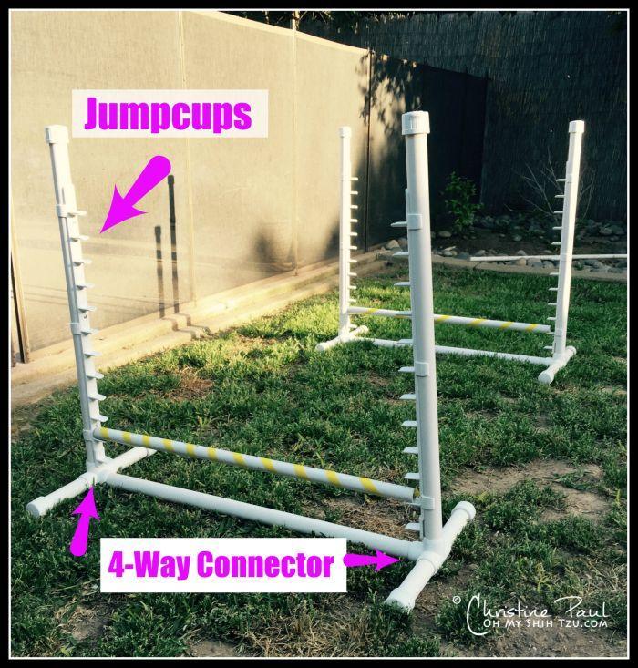 Bon Backyard Agility Equipment For Dogs!