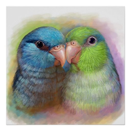 Pacific Parrotlet Parrot Realistic Painting Poster Stylish Wall