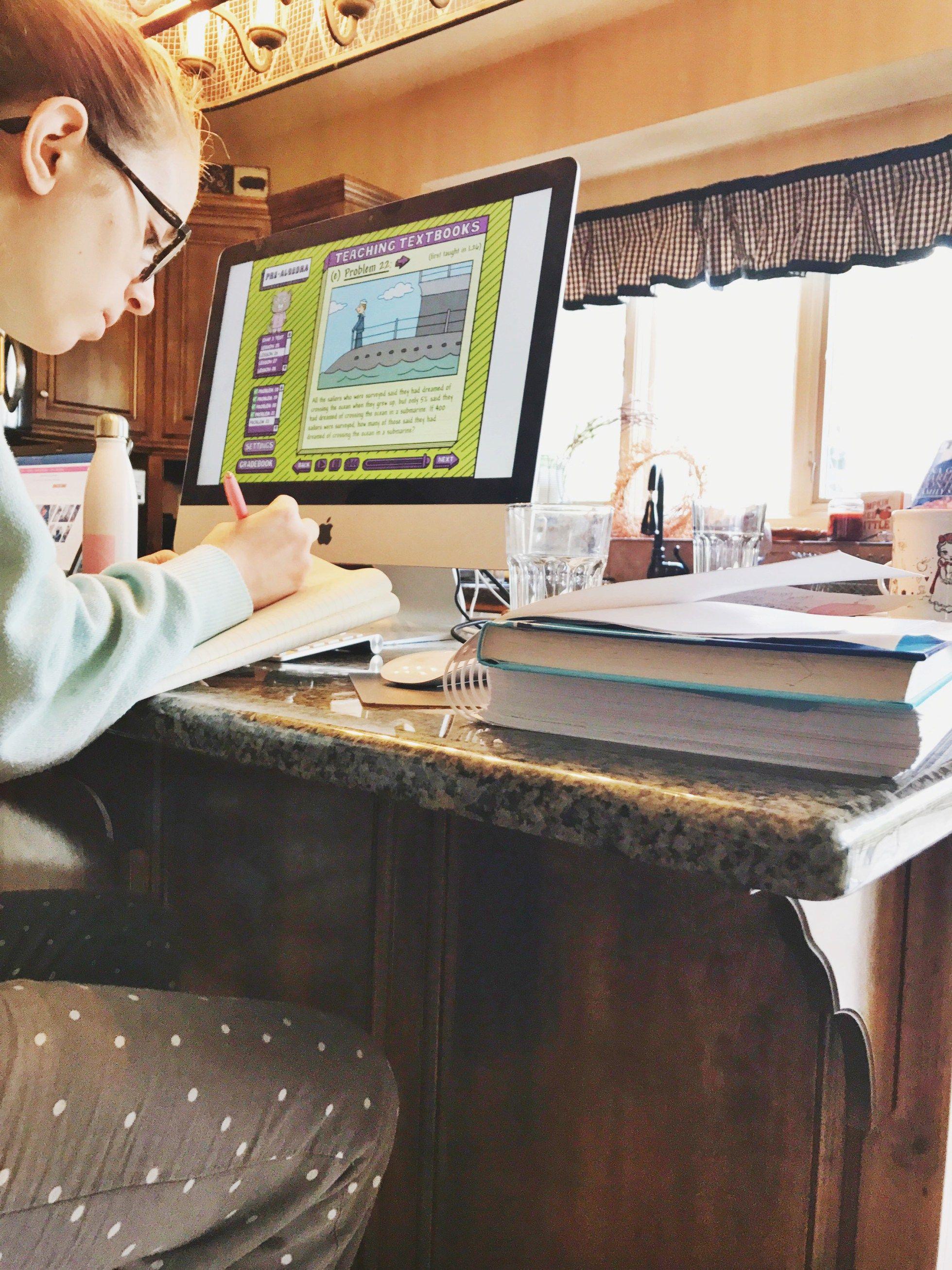 Saxon Math And Teaching Textbooks