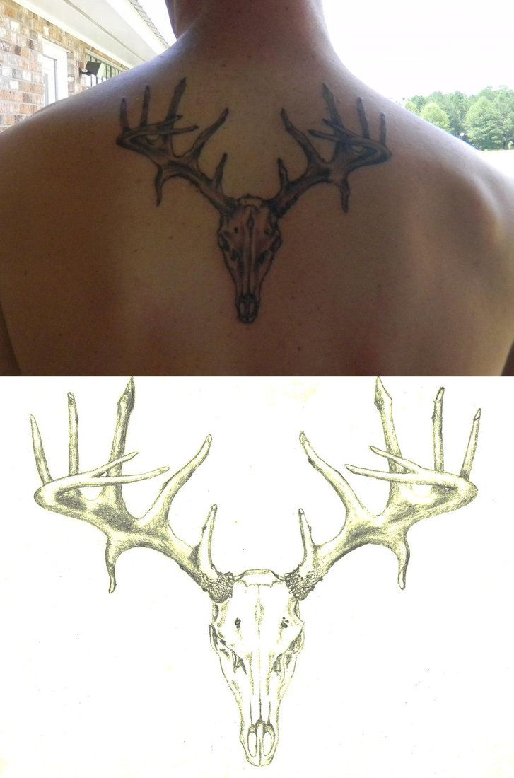 Deer skull I doodled up for my brother  The tattoo was done