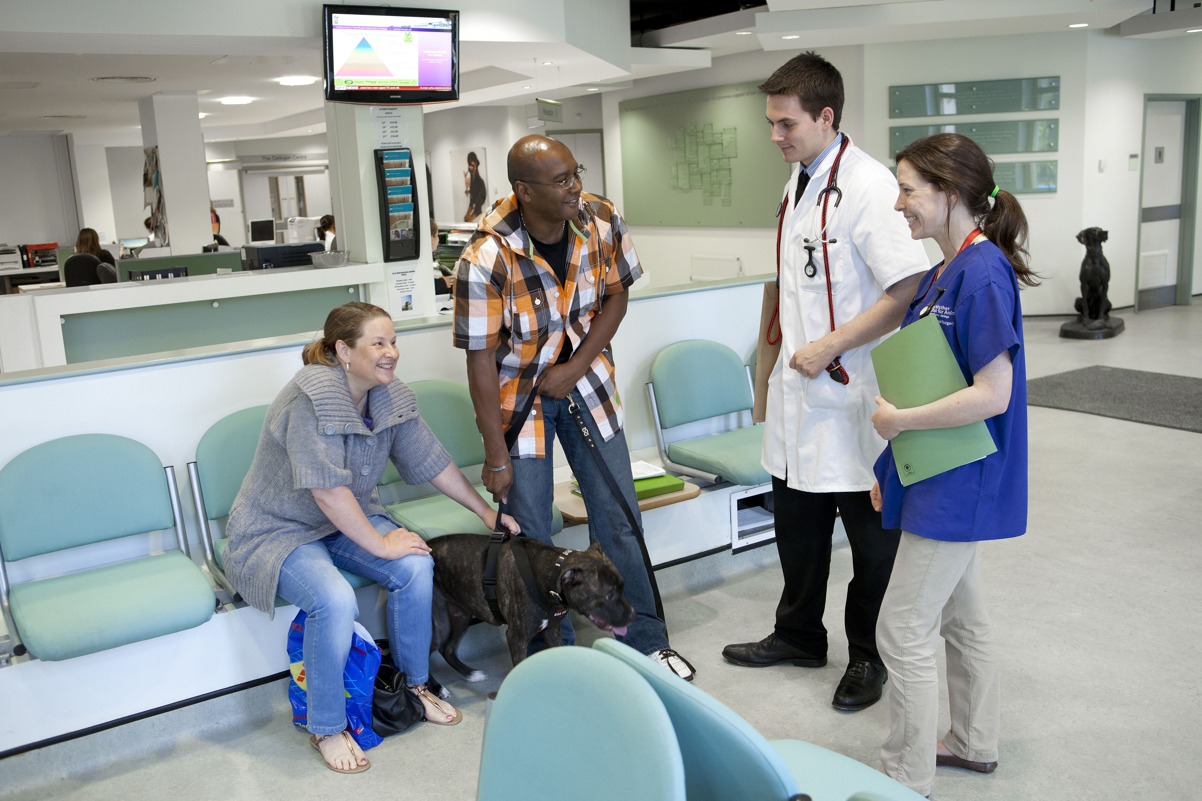 Our Large Team At The Queen Mother Hospital For Animals Offer A Responsive Friendly And Helpful Service To Referring V Veterinary Medicine Veterinary Medicine
