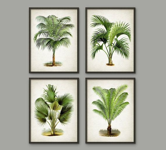 palm tree mur botanique art print set de 4 modern home decor palm tree livre illustration. Black Bedroom Furniture Sets. Home Design Ideas