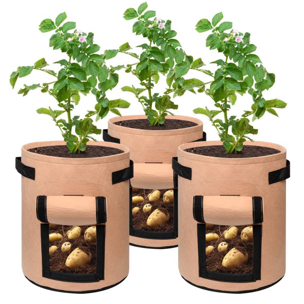 Free 2 Day Shipping Buy 3 Pack 7 Gallon Grow Bags With Window Premium Breathable Nonwoven Cloth For Planting Potato Carrot Onion Vegetables Plant Container Ae In 2020