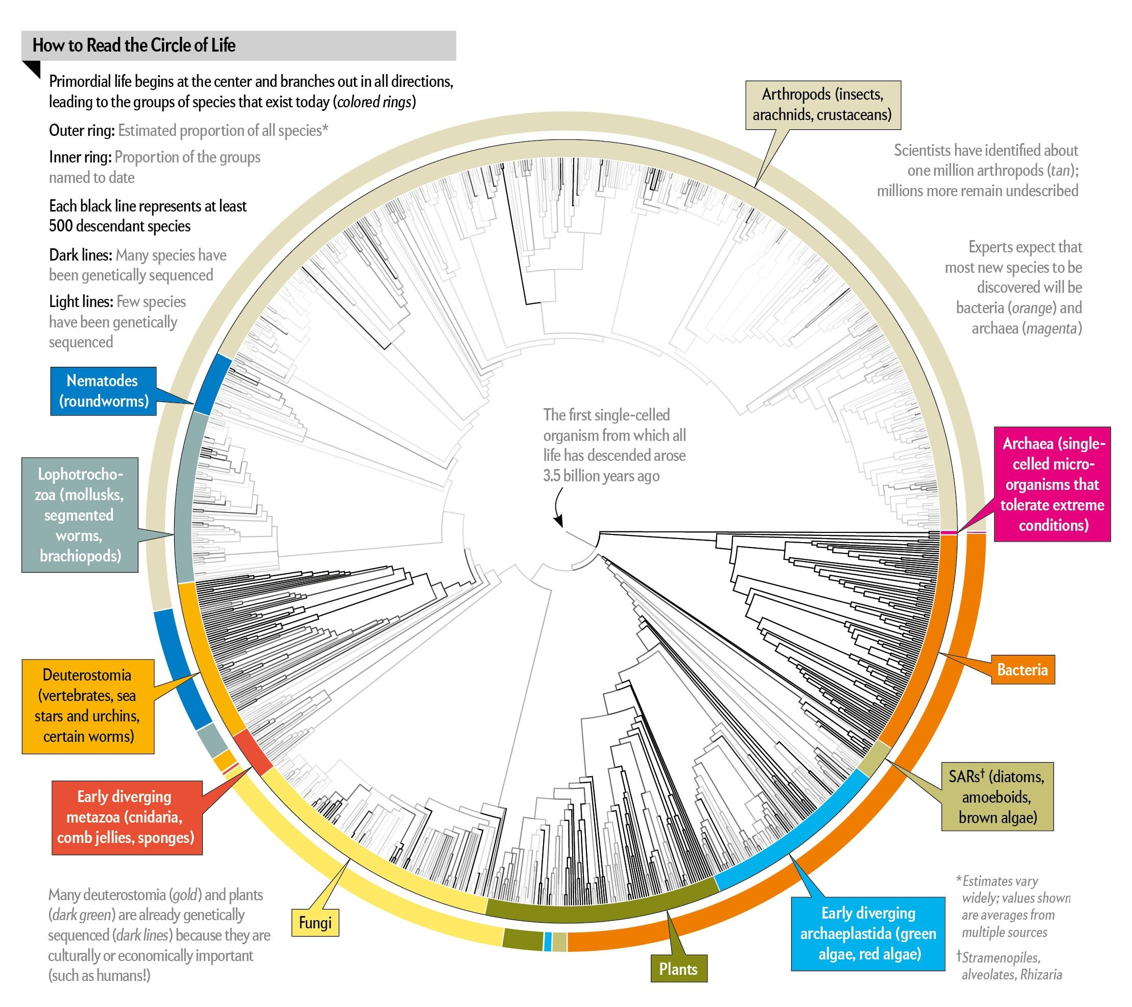 all 2 3 million species are mapped into a single circle of life