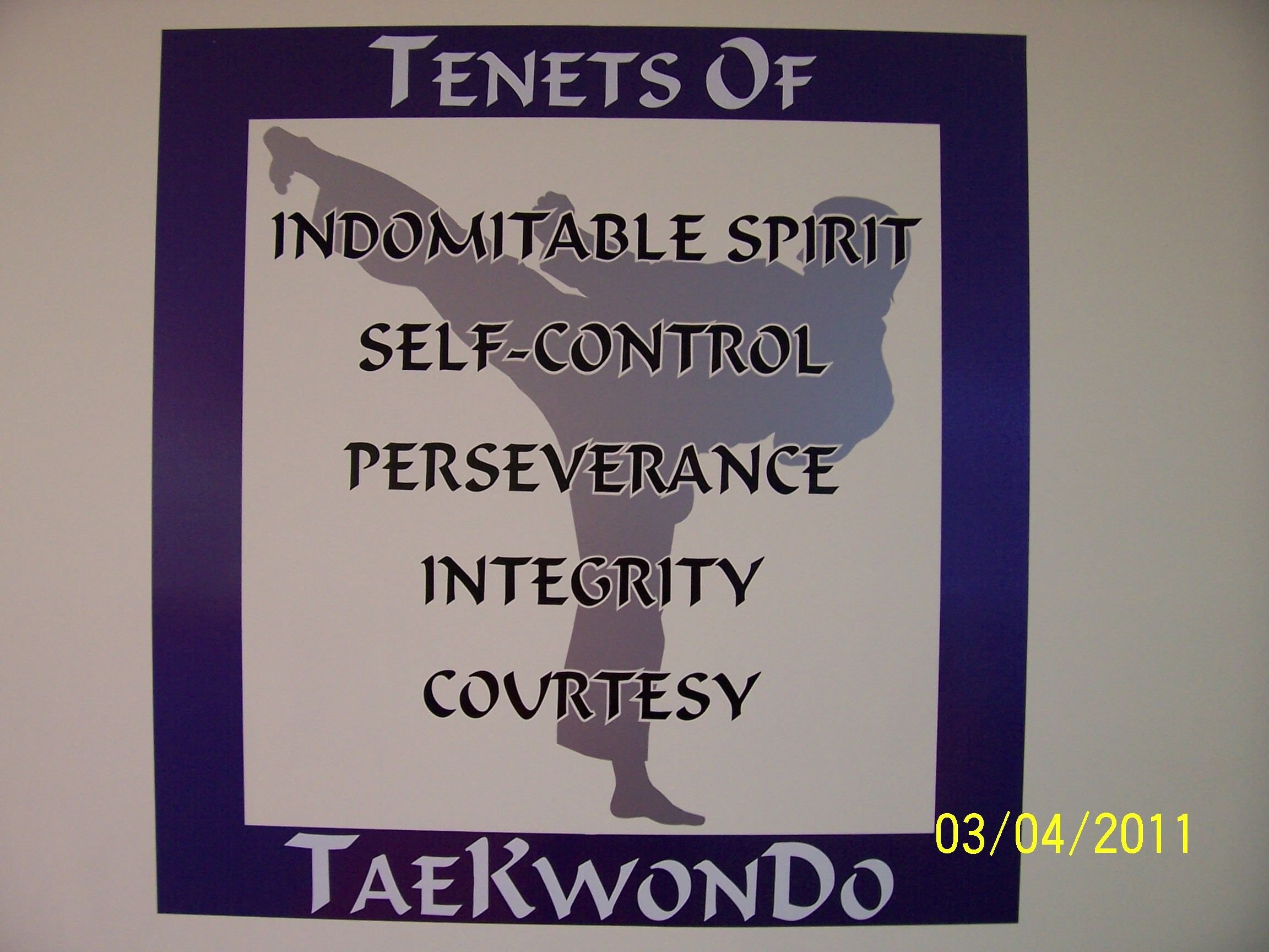 tae kwon do the way of Parker academy of martial arts this is why one could say tae kwon do is a way of life to ultimately enable ourselves to lead more valuable lives.