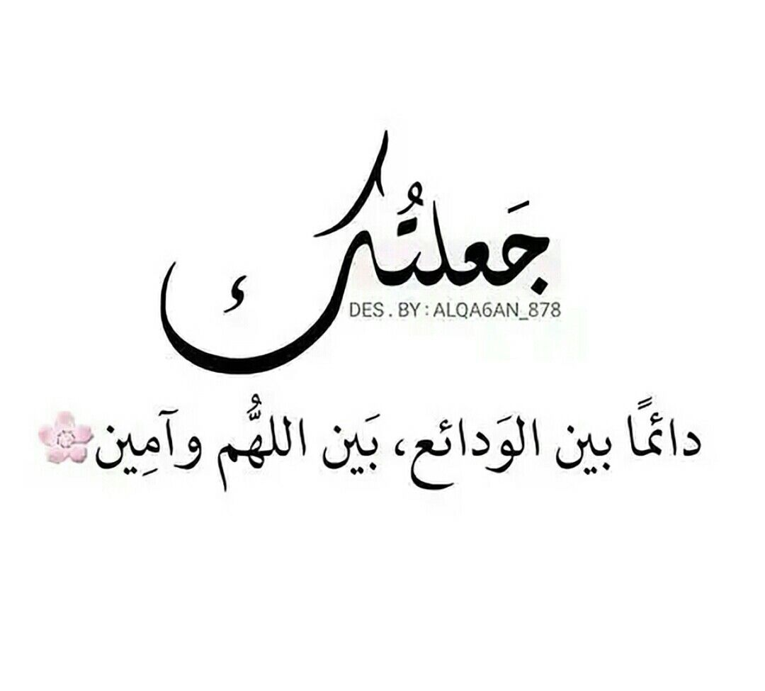 Pin By Dana Safi On ليتها تقرأ Arabic Love Quotes Wonder Quotes Photo Quotes