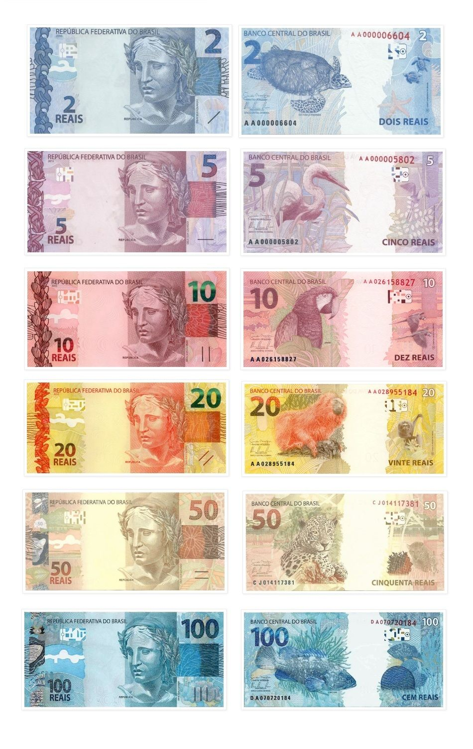 Brazil Banknotes Real R Currency Pinterest Banknote
