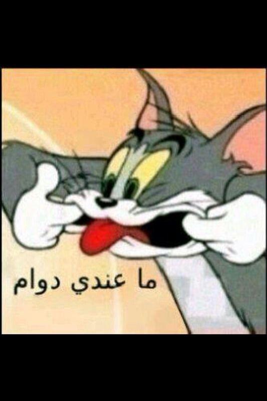 ما في دوام Funny Phrases Funny Arabic Quotes Really Funny Memes