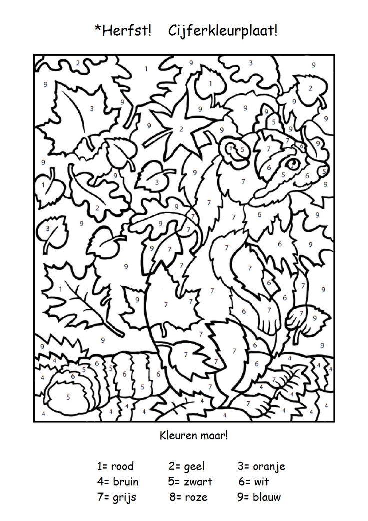 Quatang Gallery- Cijferkleurplaat Voor De Snelle Werkers Herfst Activiteiten Herfst Projecten Herfstwerkjes