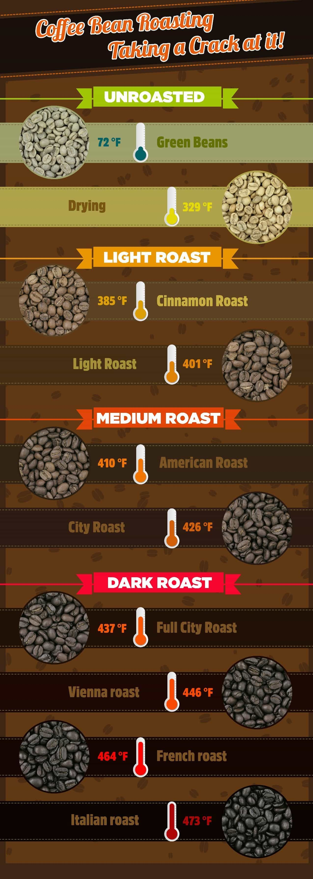 Coffee bean roasting infographic unroasted light