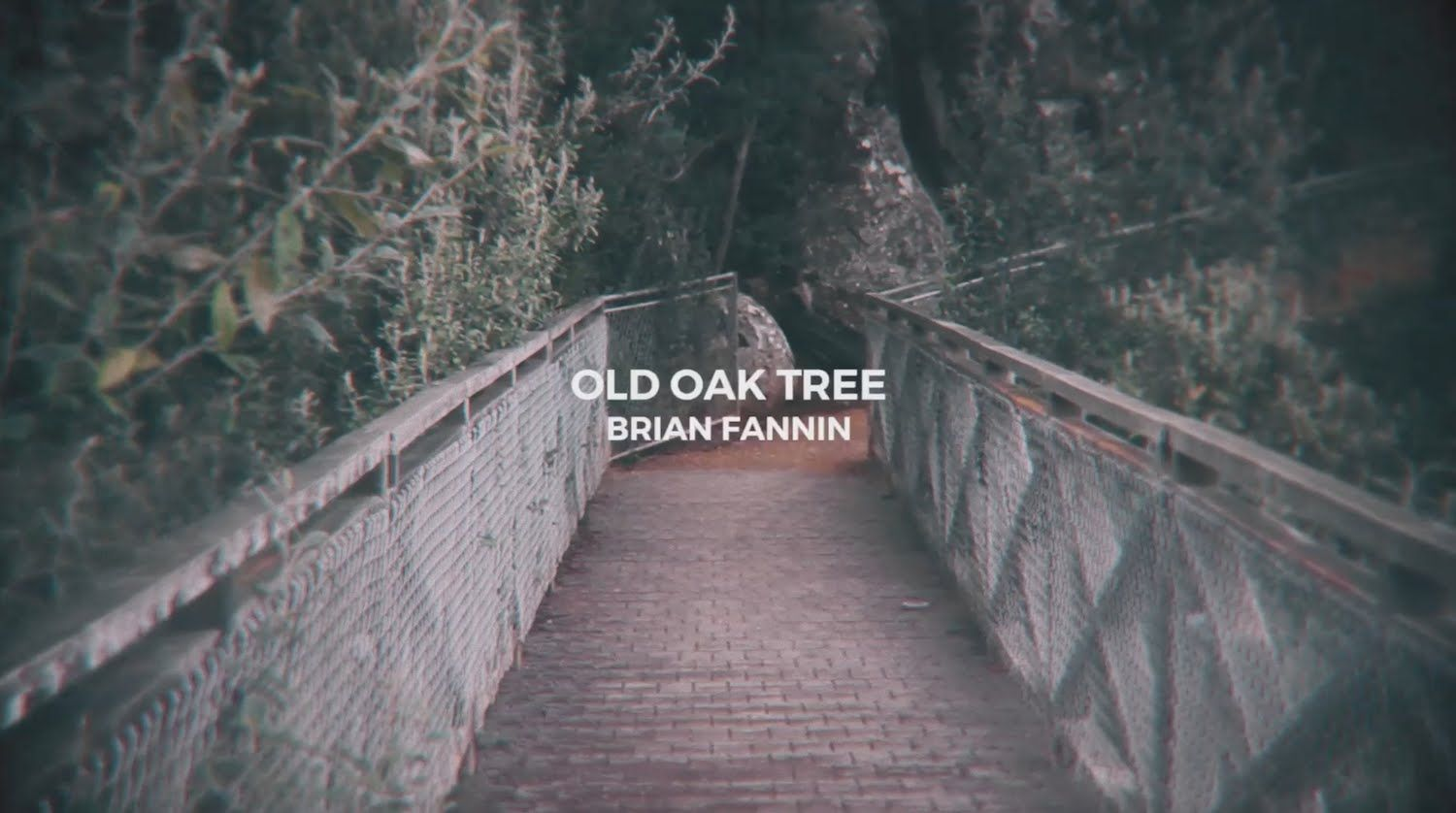 That Old Oak Tree Brian Fannin Official Lyric Video Cristo