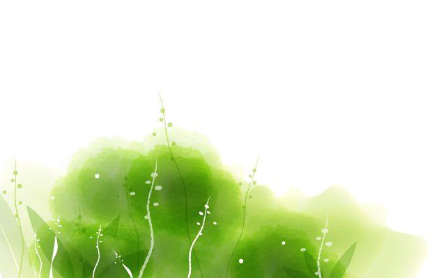 Photo of [Hình nền powerpoint] 101+ Background màu xanh lá đẹp – In Ấn Nhất Việt – Công ty In Số #1 TP Hồ Chí Minh (Hình Nền Đẹp)