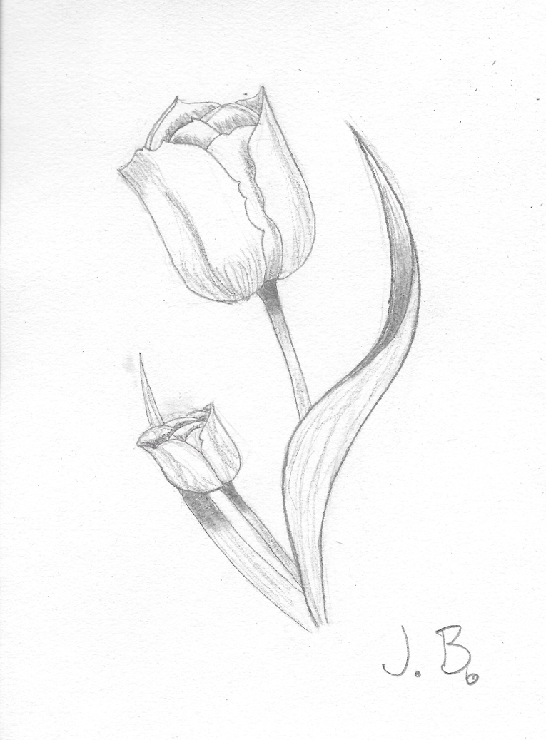 Looks like ium drawing flowers at the moment art lessons