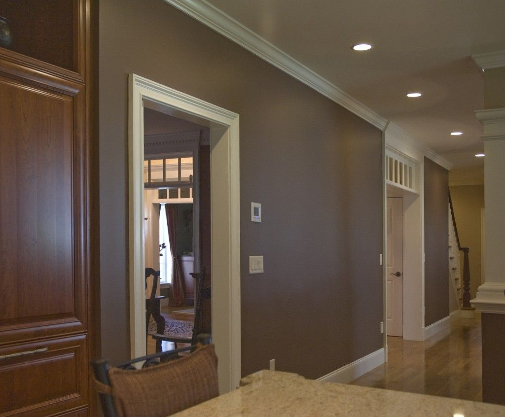 Gray brown taupe wall color full spectrum color for Brown colors for walls