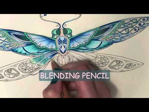 Enchanted Forest Coloring Book The Dragonfly Youtube Enchanted Forest Coloring Book Forest Coloring Book Enchanted Forest Coloring