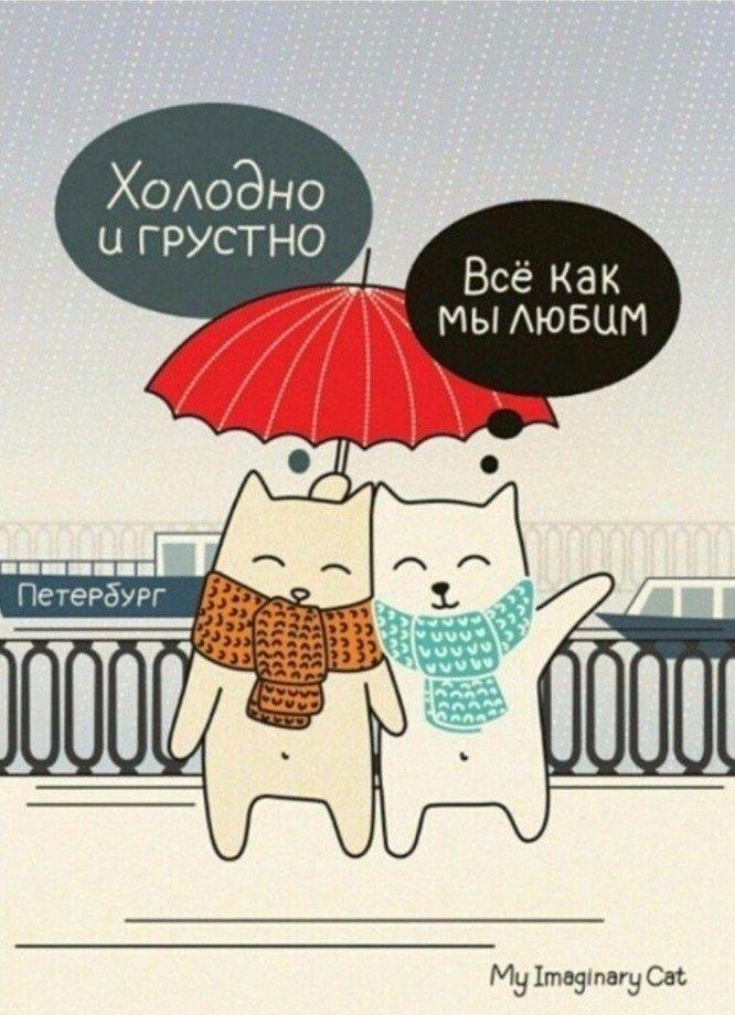 Петербург смешные картинки