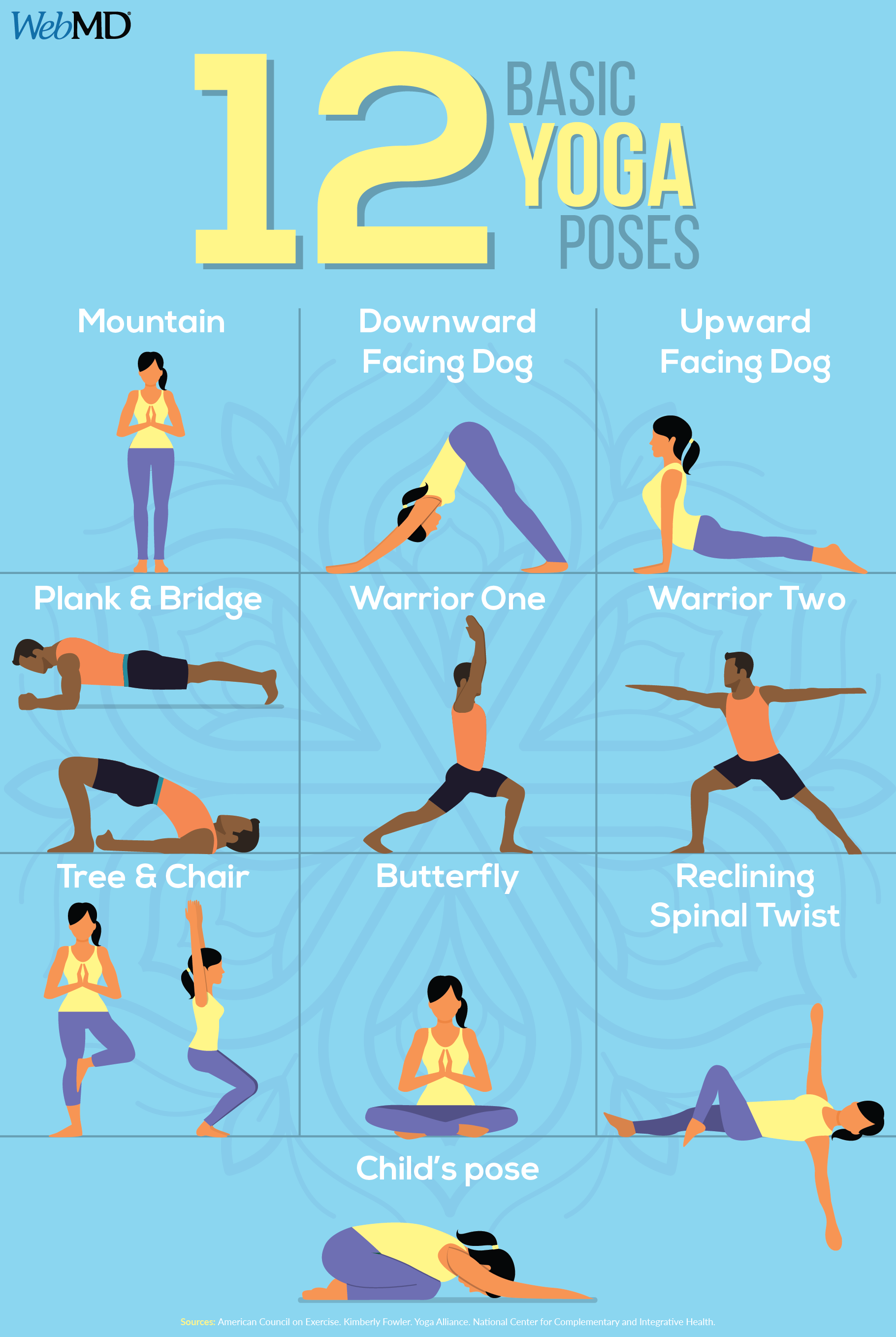 Slideshow: 40 Basic Yoga Poses  Basic yoga poses, Basic yoga