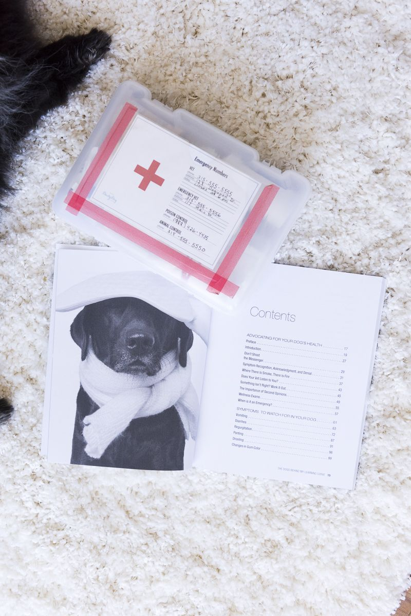 Book Review Symptoms To Watch For In Your Dog Dog Health Care Dog Health Your Dog